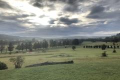 View from Grevillea - Ursula Lepporoli - Oct 2020